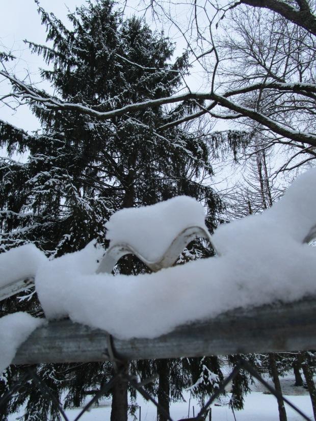 snowheart 005